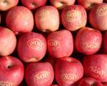 三门峡市二仙坡绿色果业有限公司